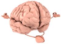MMR-Brain